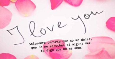 Te Amo Mi Vida Te Amo Mi Amor